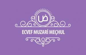 Ecvef-Muzari-mechul-kapak