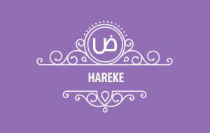 Hareke