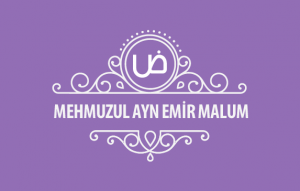 MehmuzulAyn-Emir-malum-kapak