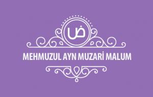 MehmuzulAyn-Muzari-malum-kapak