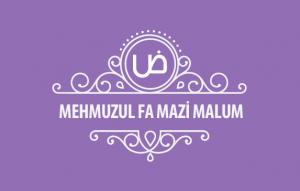 MehmuzulFa-mazi-malum-kapak