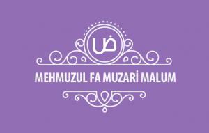 MehmuzulFa-muzari-malum-kapak