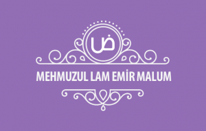 MehmuzulLam-Emir-malum-kapak