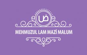 MehmuzulLam-Mazi-malum-kapak