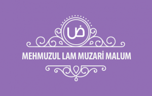 MehmuzulLam-Muzari-malum-kapak