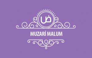 Muzari_malum-kapak